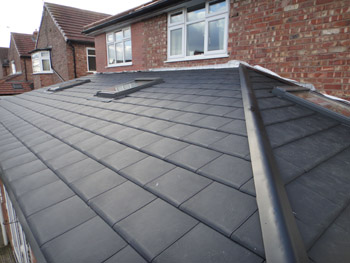 Garden Room Roof - 12 Months On
