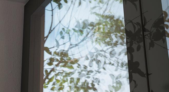 LUMI SHEDS NEW LIGHT ON WINDOWS