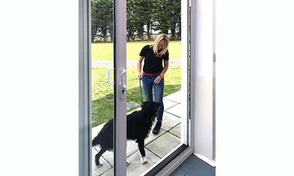 PATIOMASTER DOORS OPEN NEW OPPORTUNITIES FOR UNWANTED PETS