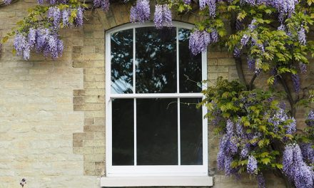 SOARING SUMMER SALES FOR SASH WINDOW SPECIALISTS ROSEVIEW