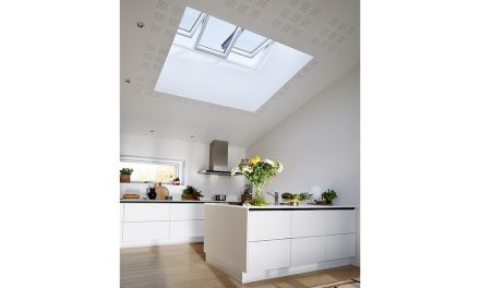 SEE THE WHOLE PICTURE WITH LAUNCH OF NEW VELUX STUDIO WINDOW